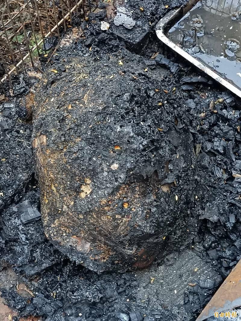被祝融奪走生命的陸龜。(記者黃美珠攝)