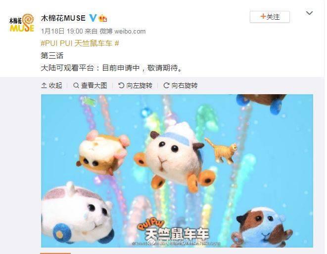 《PUI PUI 天竺鼠車車》代理商「木棉花」18日在官方微博上表示,該動畫在中國的可觀看平台還在申請階段。(圖擷取自木棉花微博)