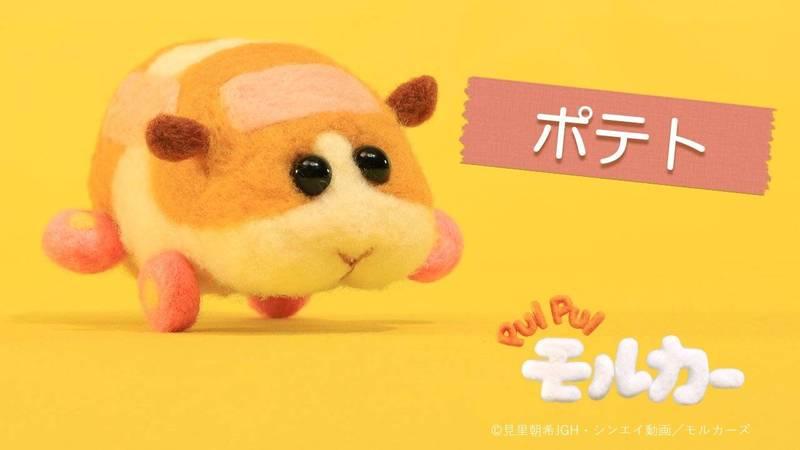 《PUI PUI 天竺鼠車車》療癒的羊毛氈天竺鼠開播不到一個月就吸引各年齡層的目光。(圖擷取自twitter:@molcar_anime)