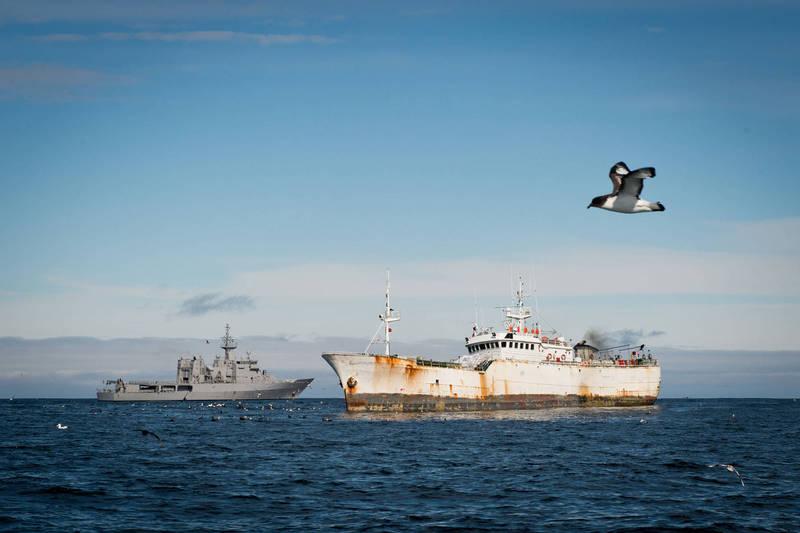 北韓去年透過「深色船隊」(dark fleet)非法捕撈魷魚的船隻數明顯下降,這對已有糧食供應危機的北韓,造成了更大的威脅。(示意圖,美聯社)
