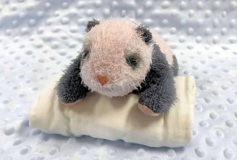 擬真「圓寶」娃娃透出淡淡的黑白色,重量則達450公克重。(台北市立動物園提供)