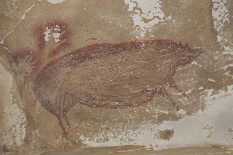 印尼發現世上最古老洞穴壁畫。(法新社)