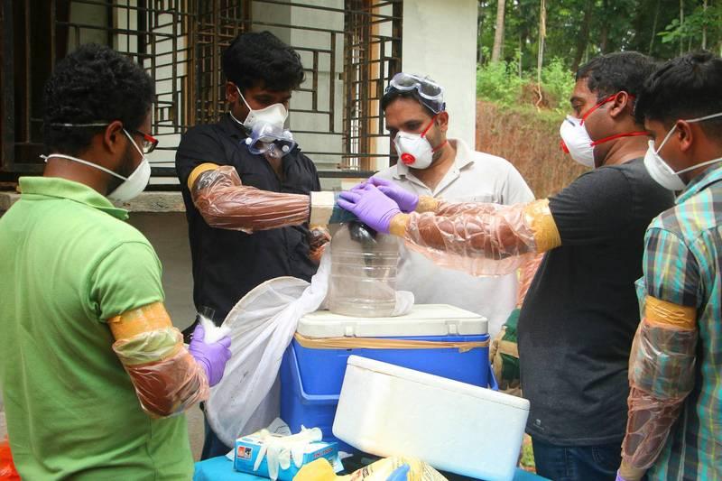 非營利組織近日表示,全球仍沒有為未來可能爆發的疫情做好準備,並警告立百病毒恐成為下一個全球大流行的疾病。圖為印度爆發立百病毒後,官員捕獲蝙蝠。(法新社資料照)