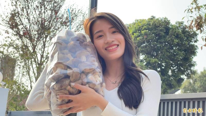 有網友到埔里鎮產地採買香菇,發現返鄉幫忙採收香菇的正妹王新雅,封她是「香菇公主」。(記者佟振國攝)
