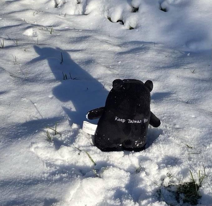 克拉夫特卸任后第二度在推特贴出台湾黑熊娃娃,这次是把娃娃放在雪地中。(图取自克拉夫特推特)(photo:LTN)