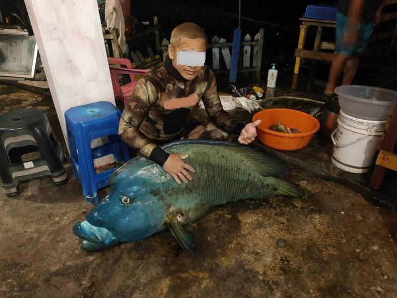蘭嶼網路社團流出的龍王鯛疑遭獵殺的照片,胸鰭及尾鰭可見魚槍傷口。(民眾提供)