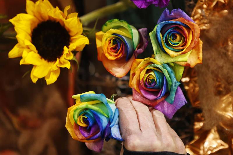 一提到植物,很多人就會想到漂亮吸睛的大小花朵,然而事實上,在過去人們熟知的地球發展史中,植物花了大約數億年才「學會」開花。(美聯社)
