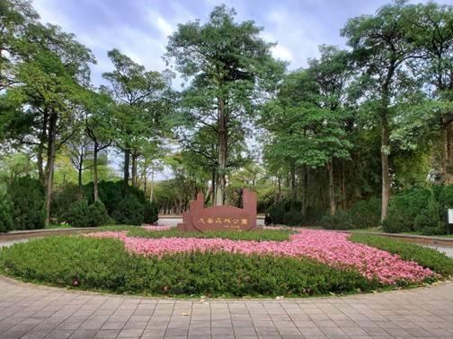 北市大安森林公園11號入口栽種5月開花俗稱夏鵑的皋月杜鵑及草花,打造成「花形廣場」。(公園處提供)