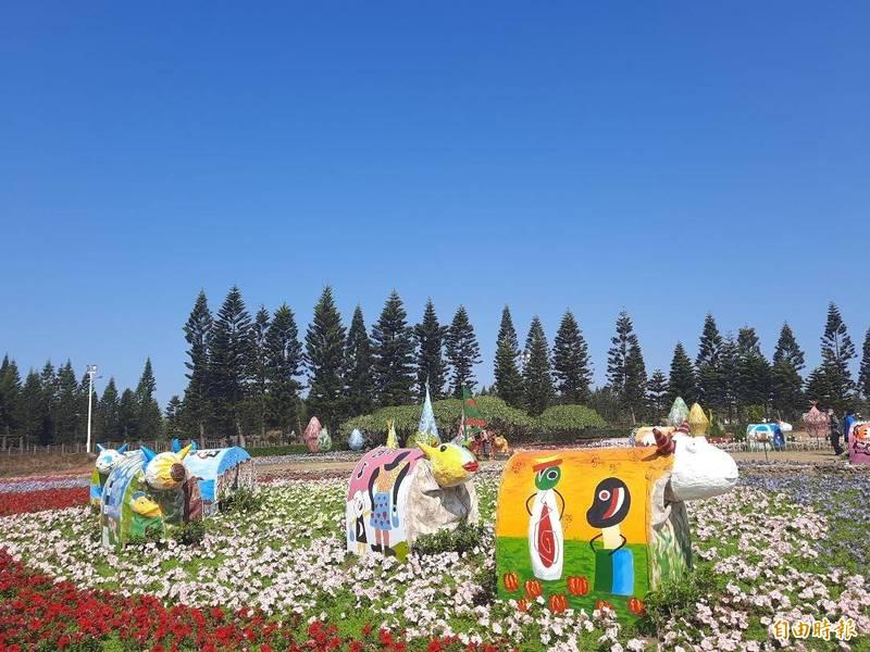 澎湖每年花海活動,都吸引不少民眾前往親子活動。(記者劉禹慶攝)