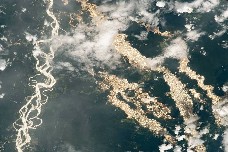 亚马逊河旁腾空出现一条闪着灿烂金光的「黄金河」,美丽的画面背后隐藏黑暗丑陋的真相。(撷取自NASA)(photo:LTN)