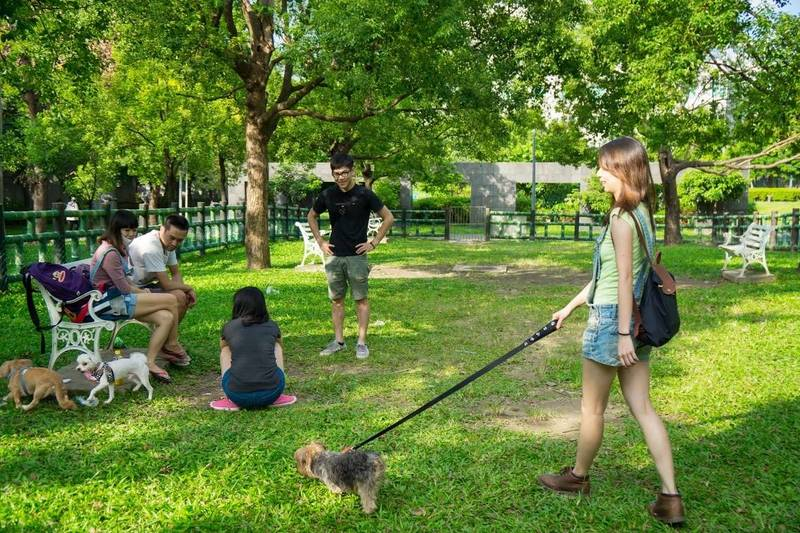 新北市7座寵物公園提供民眾與毛寶貝的專屬活動空間。(動保處提供)