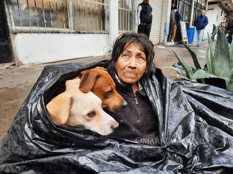 貝爾特蘭與6隻流浪狗已生活在街上8個年頭。(圖翻攝自Blanco y Negro臉書)
