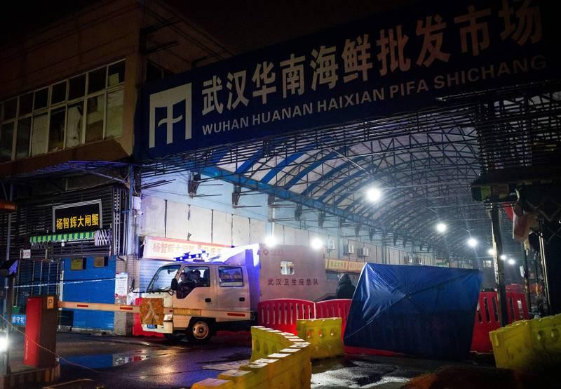 世界衛生組織(WHO)專家目前已經將病毒源頭範圍縮小,將焦點放在武漢華南海鮮市場販賣的鼬獾與兔子身上。(法新社資料照)