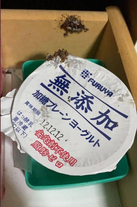 日本網友找到8年前收藏的優格。(圖擷取自ミスターえる 推特)