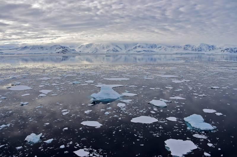 俄羅斯科學院南方研究中心科學主任根納季.馬蒂紹夫指出,世界正在走向小冰河期。圖為南極。(法新社檔案照)