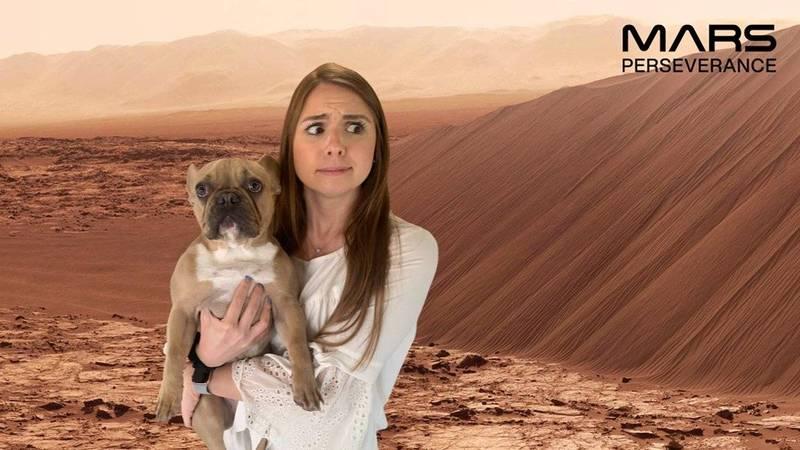 為了慶祝毅力號登陸火星,美國太空總署官網提供火星快照服務。(翻攝自MsBsBestBytes推特)
