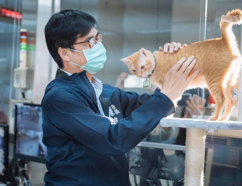 陳其邁昨拜訪雄捷運橋頭糖廠站的貓站長「蜜柑」。(取自陳其邁臉書)