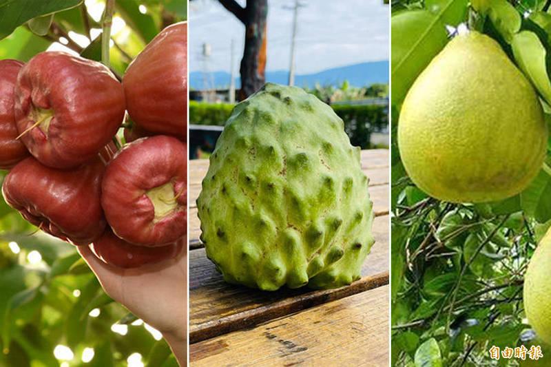 除了鳳梨外,台灣強烈倚賴中國市場的水果還有鳳梨釋迦(中)、蓮霧(左)及文旦柚(右)。(本報合成)