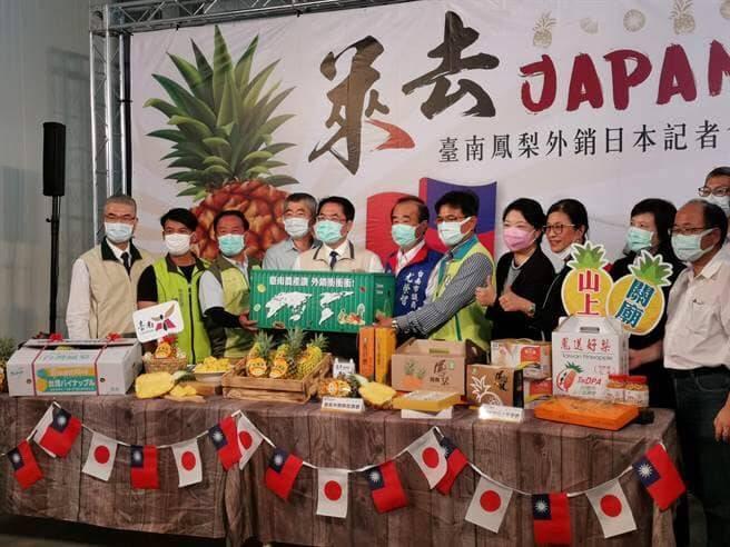台南鳳梨品質優,拓展外銷到日本。(台南市府提供)