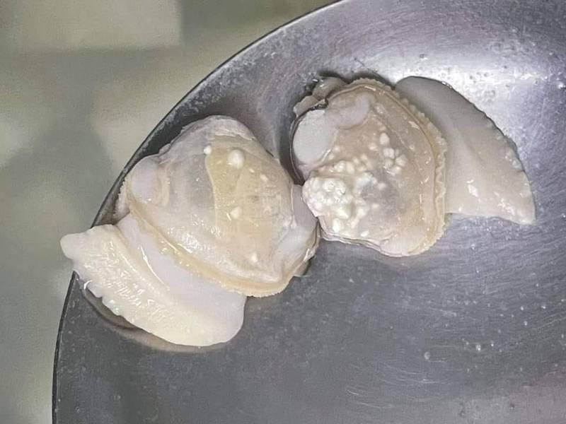 有民眾發現蛤蜊「起疹子」,嚇得不敢吃,但那其實是蛤蜊的生理機制,屬正常現象。(圖取自爆系知識家)