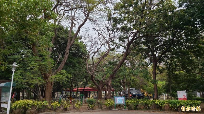 台南市東區青年公園更名為馬雅各青年紀念公園。(記者劉婉君攝)