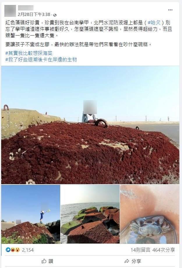 網路出現傳言,稱台南學甲北門防波堤上也有紅色藻礁,已被查證為錯誤訊息。(圖擷取自事實查核中心)