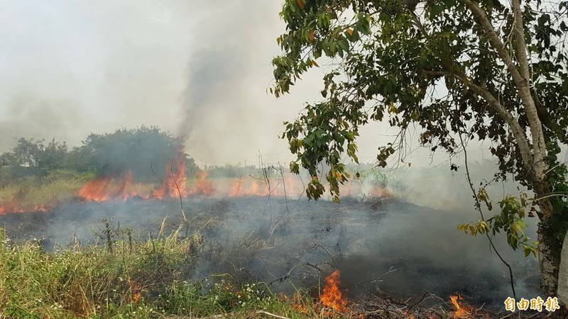 嘉義縣縣道168線旁一處農地,起火燃燒,火勢迅速蔓延,消防局人車到場滅火。(記者林宜樟攝)