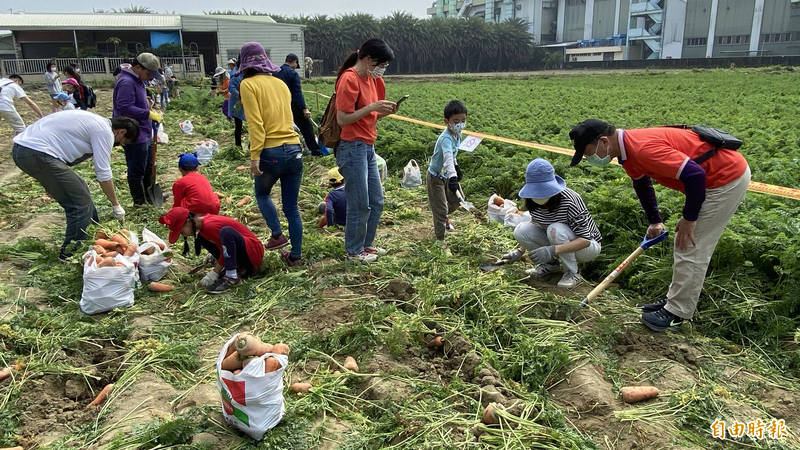 台南將軍區今天(6日)舉辦「2021斑芝花開~蘿蔔庄田園體驗活動。(記者楊金城攝)