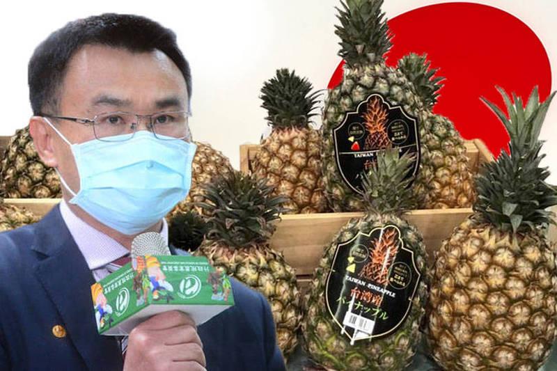 農委會主委陳吉仲在臉書貼文表示,有熱心日本網友製作台灣鳳梨地圖,標註33家可在日本買到台灣鳳梨的店鋪或銷售點。(本報合成)