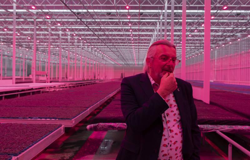 荷蘭菜農為防蟲害 出動無人機大戰飛蛾!
