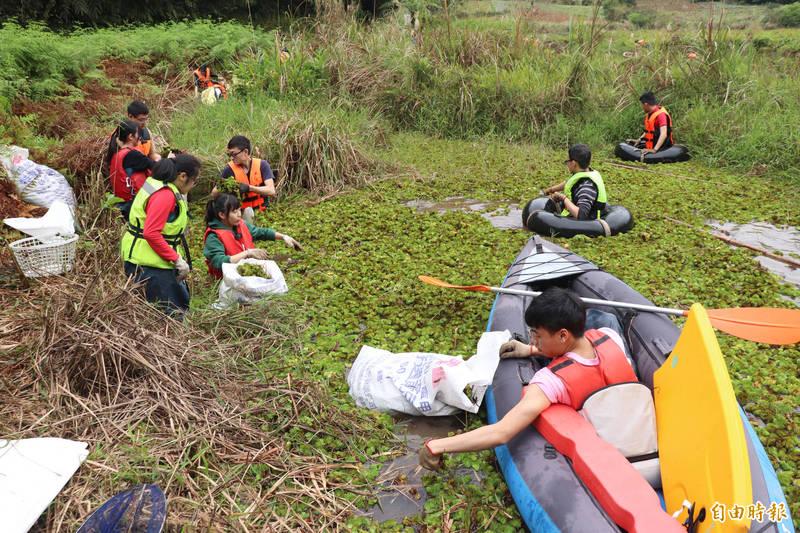 荒野協會與學生志工,一起清除雙連埤的外來種水草。(記者林敬倫攝)