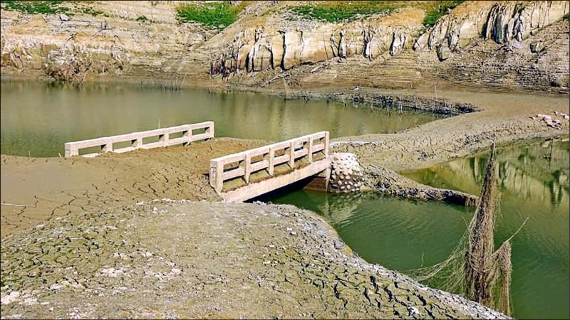 永和山水庫水位已是歷史新低,庫底的永安橋相隔40年後重見天日。(讀者林桔春提供)