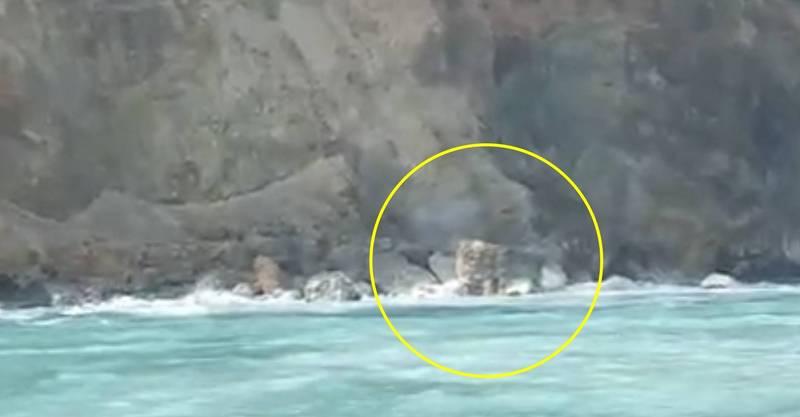 龜山島龜首的「龜島磺煙」14日重現江湖,賞鯨業者何小姐說,這兩天這一波,比14日前後的還大一些。(簡逢均提供)