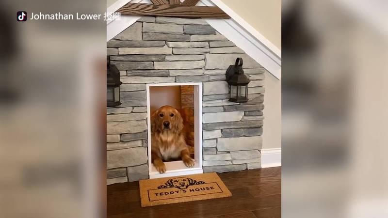 Johnathan Lower幫愛犬Teddy在屋內打造的小窩。(TikTok thehomeprojectguy 授權)