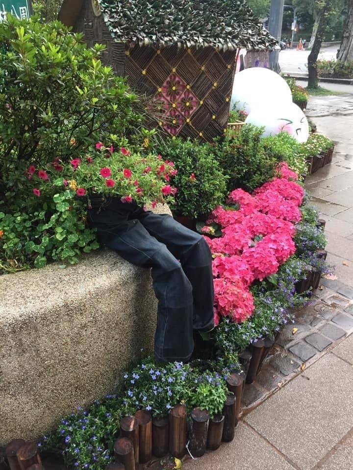 花園的花叢中露出半截褲子,乍看之下看似誰的腳。(民眾提供)
