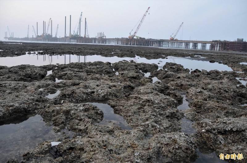 大潭藻礁。(資料照)