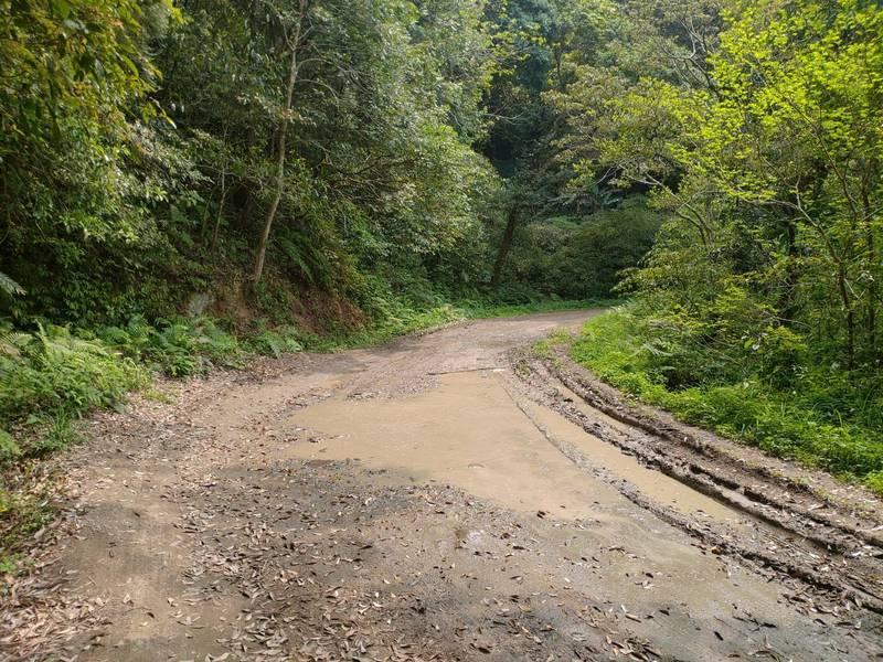 通往北得拉曼登山口的水田林道支線部分路段積水濕滑,必須施工改善。(圖由新竹林區管理處提供)