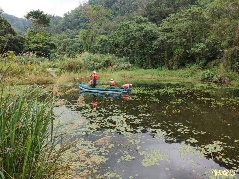 布袋蓮、粉綠狐尾藻入侵 山豬湖出動膠筏清除