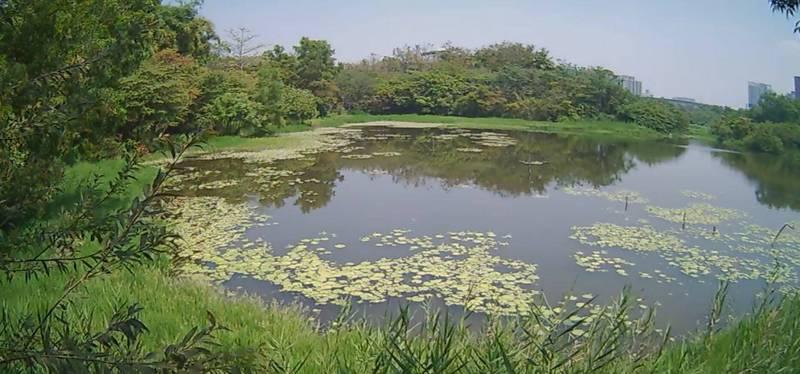 獨家》高市推動智慧公園 3濕地、2公園先試辦