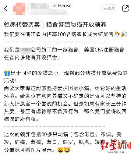 中國繁殖場想奇招,以領養之名行販賣之實,引發爭議。(圖擷取自微博)