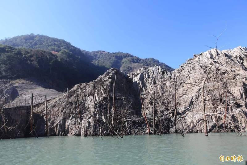 德基水庫水位持續下降,水庫內的枯樹林都現蹤。(資料照)