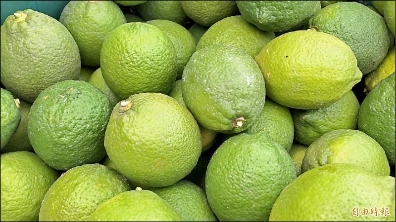 屏東縣是全台檸檬最大產地。(記者羅欣貞攝)
