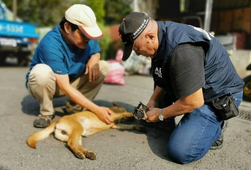 校方通報營救傷犬,紀錄救援過程po網,成為最佳生命教育。(台灣動物緊急救援小組提供)