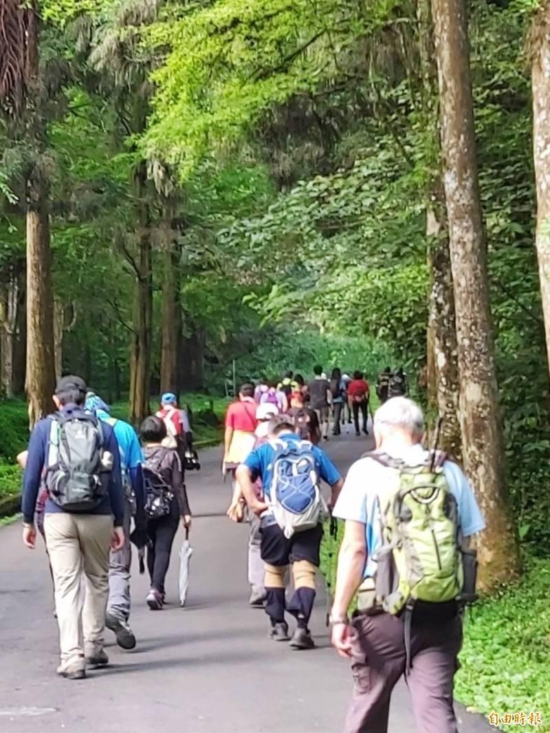 溪頭擁有豐富森林資源,吸引民眾前往遊玩及避暑。(記者謝介裕攝)
