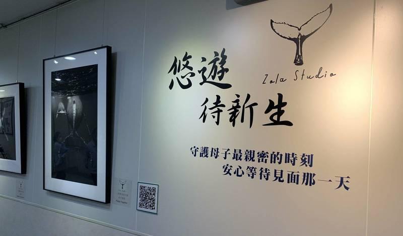 台灣女性水下攝影師陳玟樺舉辦「悠遊‧待新生」鯨豚影像攝影展。 (圖由門諾醫院提供)