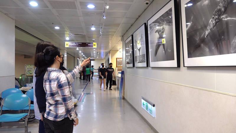 「悠遊‧待新生」攝影展,即日起展至本月底,共有9幅作品在門諾醫院門診大廳2樓展出。(圖由門諾醫院提供)