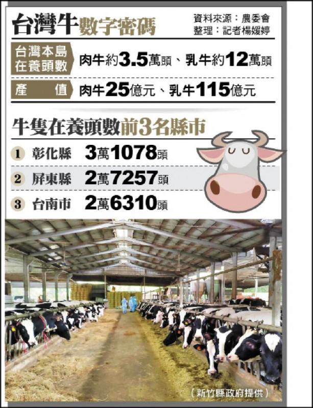 台灣牛數字密碼