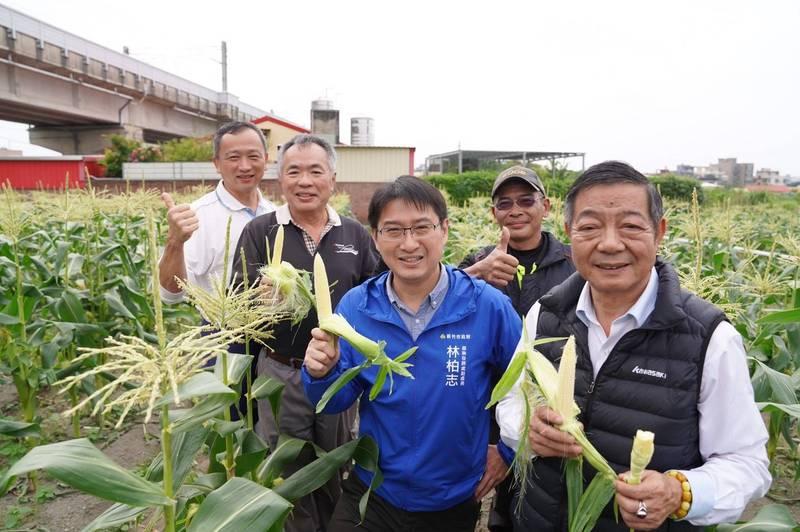 後排右起農事小組長溫敏鴻、溫敏仲、溫敏鎰持北海道牛奶玉米幼穗合照。(圖由市府提供)