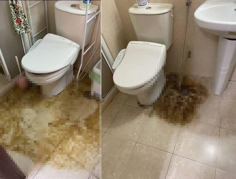圖左為原PO家廁所11日情況,圖右為20日情況。(翻攝Dcard)