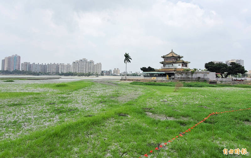 澄清湖旁的得月樓餐廳附近的乾涸湖底,在這幾天小雨滋潤下長出小草。(記者張忠義攝)